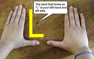 hand-forms-l4