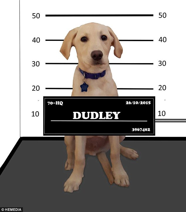 Dudley-1